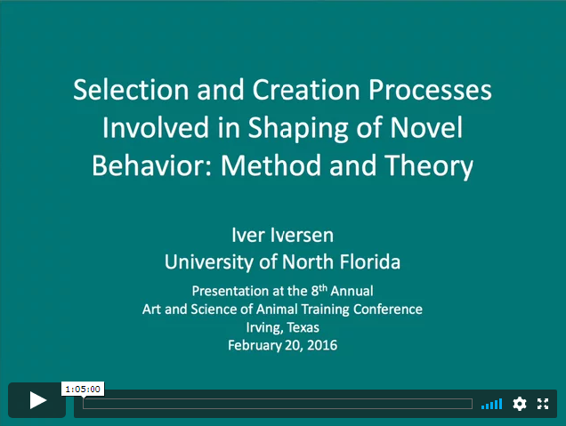Screenshot for Dr. Iver Iversen's keynote address video about shaping